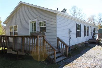 Greene County Single Family Home For Sale: 40 Route 23c