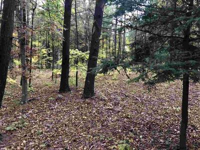 Saugerties Residential Lots & Land For Sale: 52 Mayfield Estates