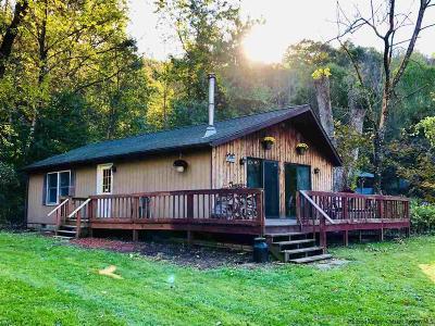 Phoenicia Single Family Home For Sale: 24 Lane Street