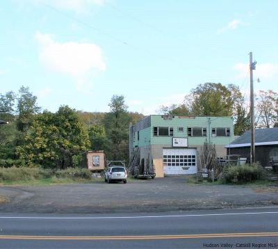 Saugerties Commercial For Sale: 648 Route 212
