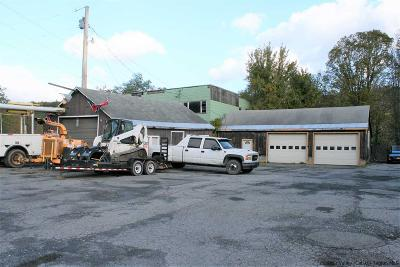 Saugerties Commercial For Sale: 646 Route 212