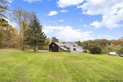 Greene County Single Family Home For Sale: 175 Flatbush Road