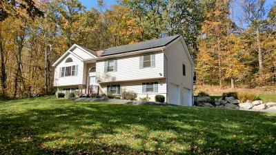 Single Family Home For Sale: 513 S Mountain Road