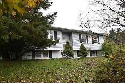 Rhinebeck Single Family Home For Sale: 78 Frost Rd.