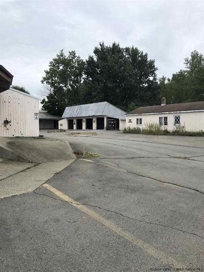Greene County Commercial For Sale: 30 Bailey Street