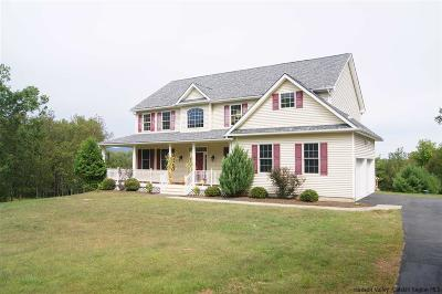 Ulster County Single Family Home For Sale: 262 Stickles Terrace