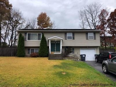 Maybrook Single Family Home For Sale: 16 Ted Miller Drive