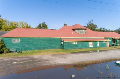 Ulster County Commercial For Sale: 206 Canal Street