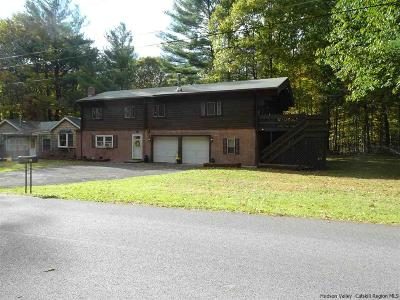 Saugerties Multi Family Home For Sale: 58 Valk Road