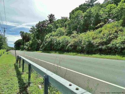Kingston Commercial Lots & Land For Sale: 2286 Route 9w
