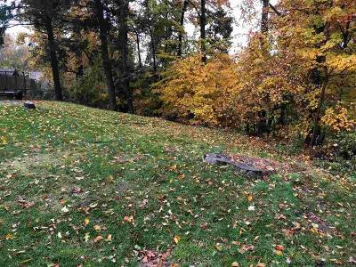 Saugerties Residential Lots & Land For Sale: Edith And Dewitt