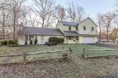 Ulster County Single Family Home For Sale: 44 Van Buskirk Road
