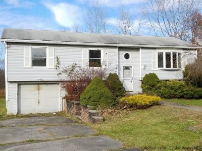 Wallkill Single Family Home For Sale: 13 C E Penney Drive