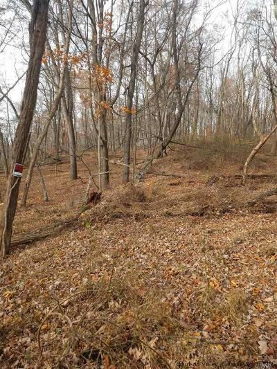 Ulster County Residential Lots & Land Accepted Offer Cts: 890 Route 9w
