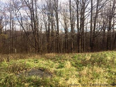 Commercial Lots & Land For Sale: Route 9w