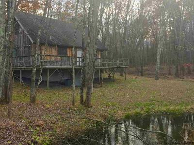 Orange County, Sullivan County, Ulster County Rental For Rent: 125 Stone Dock Road