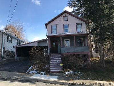 Kingston Single Family Home For Sale: 118 Newkirk Avenue