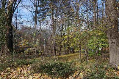 Ulster County Residential Lots & Land For Sale: 730 Second Avenue
