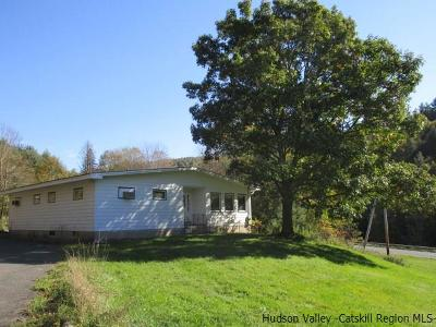 Greene County Single Family Home For Sale: 139 County Route 17 Route