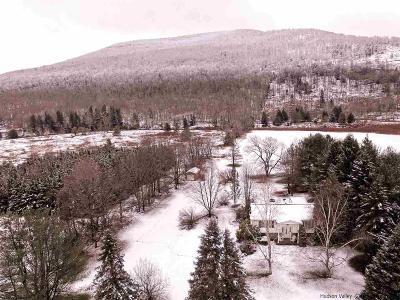 Greene County Single Family Home For Sale: 97 Carrington Rd