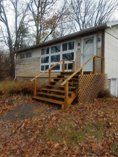 Saugerties Single Family Home For Sale: 162 Potter Hill Rd