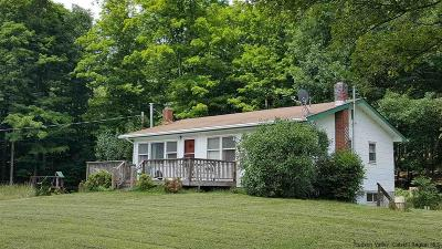 Greene County Single Family Home For Sale: 675 Dent Road