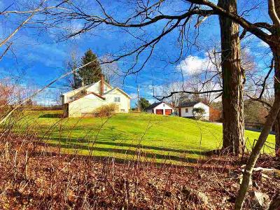 Ulster County Single Family Home For Sale: 441 Upper Sahler Mill Road