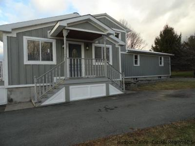 Ulster County Single Family Home For Sale: 1713 Ulster Heights Road