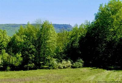 Stone Ridge Residential Lots & Land For Sale: #1 Old Kings Highway