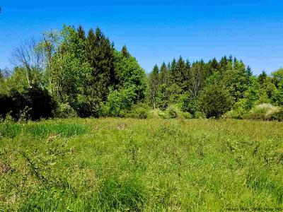 Stone Ridge Residential Lots & Land For Sale: #2 Old Kings Highway