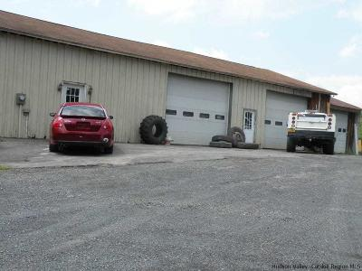 Greene County Commercial For Sale: 392 Hamburg Road