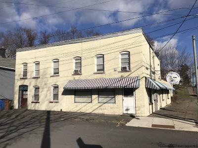 Kingston Commercial For Sale: 177 Greenkill Avenue