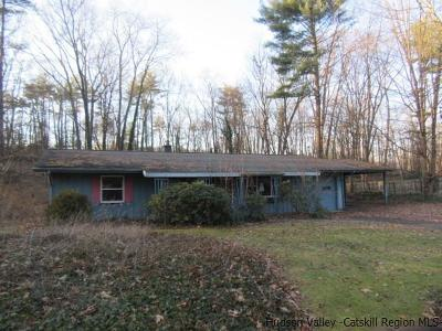 Ulster County Single Family Home For Sale: 103 Pine Street