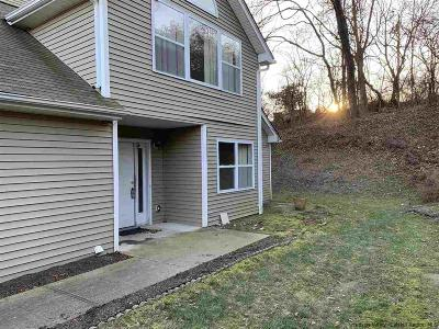 Ulster County Townhouse For Sale: 63 Twin Ponds Drive