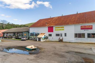 Ulster County Commercial For Sale: 212 Canal Street