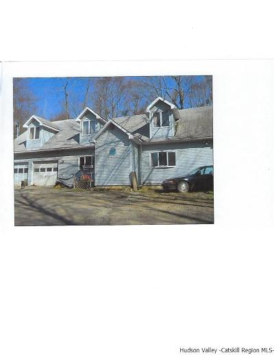 Ellenville Single Family Home For Sale: 49 Anderson Road