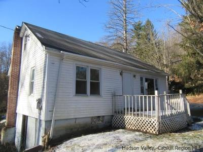 Napanoch Single Family Home For Sale: 75 State Rt 55