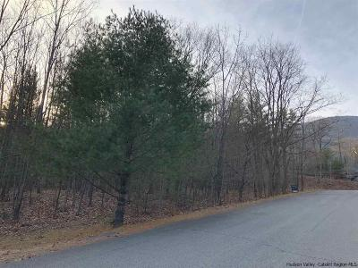 Saugerties Residential Lots & Land For Sale: 35 Dorothy Grace Road