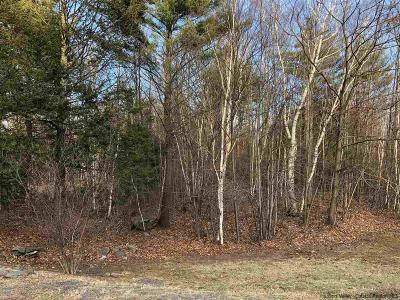 Saugerties Residential Lots & Land For Sale: 18 Dorothy Grace Road