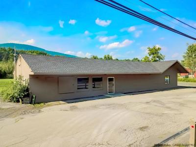 Shokan Commercial For Sale: 2802-2806 Route 28
