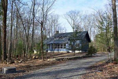 Stone Ridge Single Family Home For Sale: 253 Chestnut Hill Road