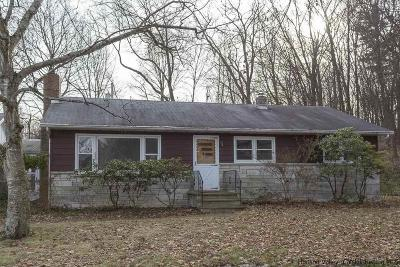 Hurley Single Family Home For Sale: 274 Dewitt Mills Road