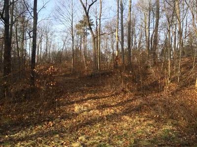 Saugerties Residential Lots & Land For Sale: 4bb Grandview Circle