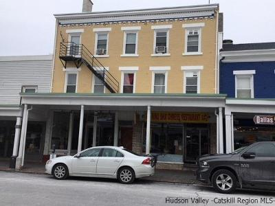 Kingston Commercial For Sale: 53 North Front St