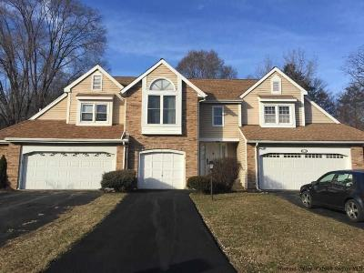 Saugerties Townhouse For Sale: 9 Cottonwood Cir