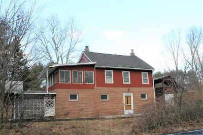 Saugerties Single Family Home For Sale: 1268 Route 212