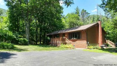 Saugerties Single Family Home For Sale: 28 Becker Road