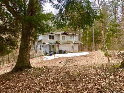 Delaware County Single Family Home For Sale: 340 Yaramenko Road