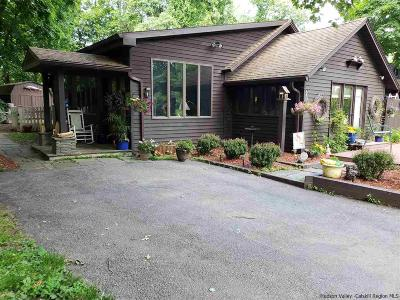Ulster County Single Family Home For Sale: 284 Dewitt Mills Road