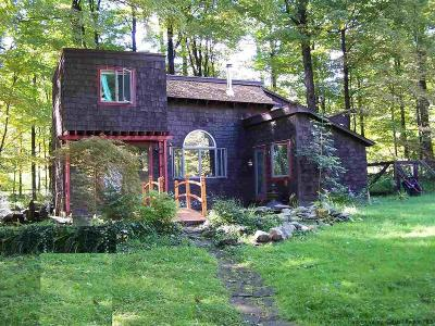 Ulster County Single Family Home For Sale: 2310 Glasco Turnpike